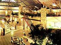 Portobello Resort & Safari - Serviços