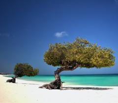 Reveillon em Aruba
