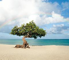 Viagem_setembro_caribe